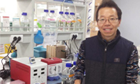 Logos Biosystems Korea Brain Research Institute Youngshik Choe X-CLARITY Tissue Clearing System